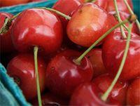 Cherries022009