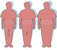 Obesity-thumb-590x519-15733