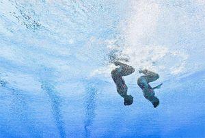 504x_underwater4072109