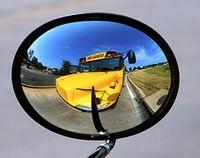 Schoolbus-thumb-240x190-43875
