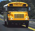 Schoolbus773212