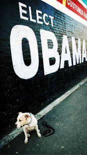 2008_9_dogs_for_obama
